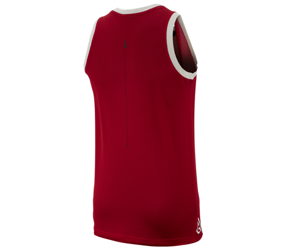 Maillot Giannis Print